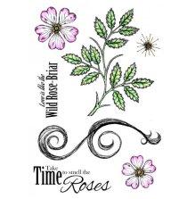 Crafters Companion Sheena Douglass A5 Rubber Stamp Set - Wild Rose-Briar UTGÅENDE