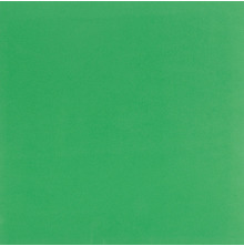 Bazzill Self Adhesive Foam Sheet 12X12 - Green