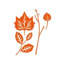 Tonic Studios Autumn Die Collection – Fallen Leaves 1433E