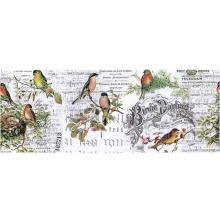 Tim Holtz Idea-Ology Collage Paper 6yds - Aviary